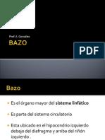 presentacion resumne bazo