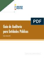Guía de Auditorías Para Entidades Públicas 2015