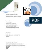 Informe LAB LACTEOS Yogurt-kumis