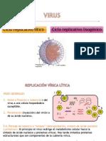 Replicación de los Virus