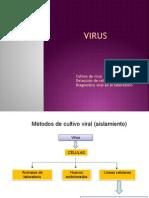 3.Virus Dxviral