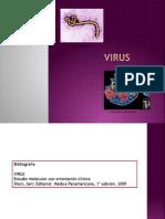 1.Virus Clasificación y Estructura
