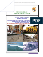 PIP DE COE  CAÑETE.pdf