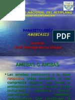 AMEBAS Y  ENTAMOEBA HISTOLYTICA (1).ppt