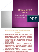 Tunagrahita berat.pdf