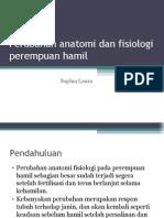 Perubahan Anatomi Dan Fisiologi Perempuan Hamil