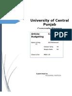 Article capital budget