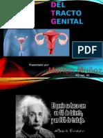 Infecciones Genitales Fem