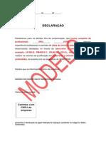 Modelo Declaracao Snqc