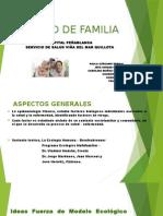Presentación Proyecto UFAM