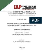 Trabajo final de Seguridad Higiene y Medio Ambiente.docx