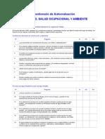 Cuestionario Diagnóstico Ssa