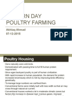 Modern Day Poultry Farming