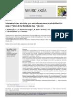 TAA en Neurorehabilitacion Revision 2000 2013