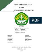 Askep Sindrom Nefrotik Ulfa Revisi