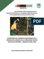 ESTIMACIÓN DE CARBONO CNI.pdf