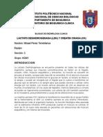 Reporte de Bioquimica 8