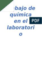 Trabajo de Química en El Laboratorio