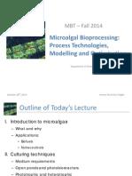 Microalgal Bioprocessing
