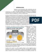 MYPEs - La pequeña y mediana empresa en el Peru y analisis de si situacion actual