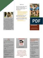 brochure vb pdf
