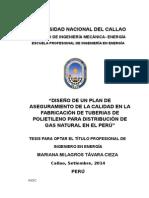Informe de Tesis Mariana Tavara - Copia