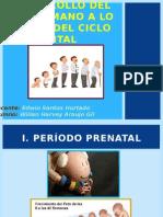 3. Desarrollo Del Ser Humano - Ciclo Vital