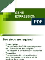 05 gene expression