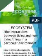 fybcomevsstudy | Ecosystem | Natural Environment