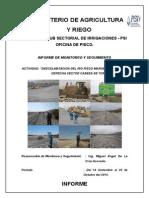 Informe Del Profesional de Monitoreo y Seguimiento_final Miguel