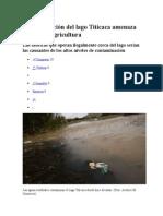 Contaminación Del Lago Titicaca Amenaza Especies y Agricultura