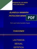 Cirugia - Clase 01 - Patología de Glandula Mamaria - 23abr15