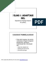 Lab Act Jejas & Adaptasi Sel, Fbs 3 Ta 08-09