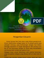Estuarin Dan Rawa Asin(Kel.4)