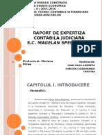 Raport de Expertiza Contabila - Judiciara