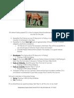 Foaling Season Newsletter