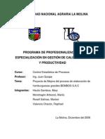 Programa de profesionalización y especialización en gestión de calidad total y productividad