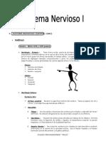 Sistema Nervioso I