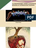 La Bioenergética y Fenomenología