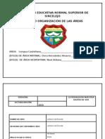 nuevo plan de area 2015 lengua castellana
