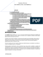 Neoplasias_Definiciones