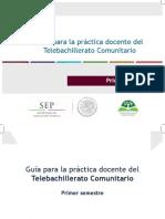 Guia_docente_TBC_1_2015