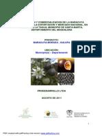 ESTUDIO DE PREINVERSION MARACUYA MORADA.pdf