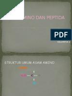 Pptku Asam Amino n Peptida