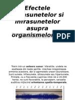 Efectele Ultrasunetelor Si Infrasunetelor Asupra Organismelor Vii (1)