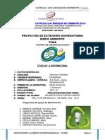 David Panca Contabilidad Etapa 04 Informe Final