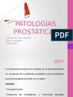 presentacion patologias prostata
