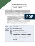 Plan Anual de Desarrollo Curricular Educacion Fisica 2015