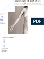 234378161-Acupuncture-Atlas-great-System.pdf