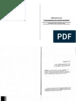 IV 2 Winfried Hassemer Los Presupuestos de La Prisi n Preventiva